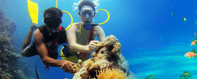 andaman honeymoon Trip