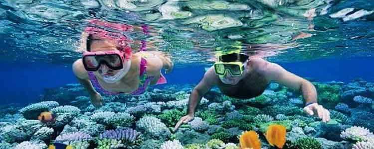 andaman honeymoon tours