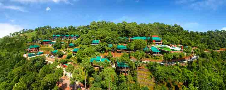 kasauli Tour